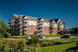 Spacious 1 Bdr Apartment in Clayton Park West For Rent