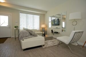Brand New Three Bedroom Town Home For Rent