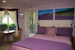 *Ah!  Refreshing ocean breezes Mini Suite on the Sunshine Coast!
