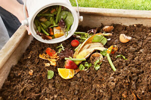 kitchen scraps for compost - will pick up