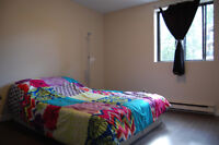 Renovated 1 bedroom apartment - St Catharines Short-term lease