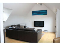 Stunning and spacious 2 bedroom apartment in Wanstead Part dss accepted with guarantor