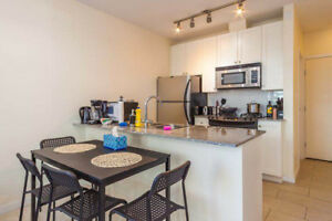 536ft2-Spacious 1 Bed+1 Bath on Robson St. in Downtown Vancouver