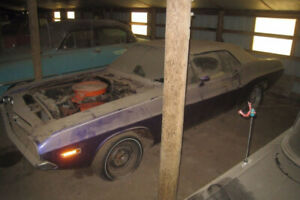 Looking for a challenger 70-71 or cuda 70-71 or charger 68-70
