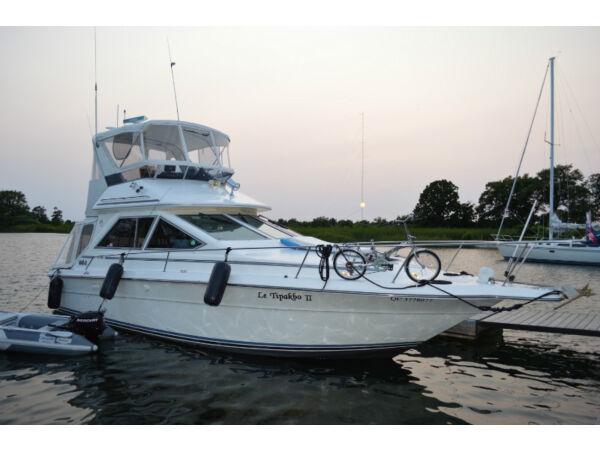 1989 Sea Ray Boats Sea Ray 340 Sedan Bridge