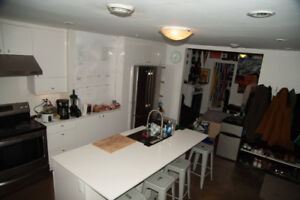4 Bedroom Fully Furnished Summer Sublet in the McGill Ghetto