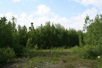 BEAUTIFUL KENT COUNTY 24 ACRES VACANT LOT KENT COUNTY