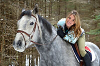 Equestrian Photoshoots!