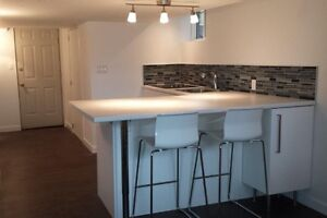 Bachelor basement appartment in Burlington