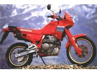 Honda Dominator NX650 Wanted