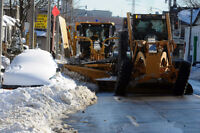 do u wanna shovel this winter? if not  call and save now