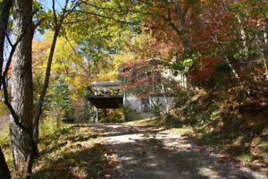 Treetop Mountain Vista! Romantic Retreat With Amazing Views, Hot