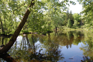 1.4 Acre Waterfront Building lot, 25min north of Belleville ON