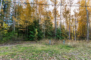 Lot 174 Anglemont Drive, Anglemont - Desirable Flat Lot