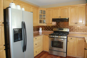 4 Bedroom home with finished basement/ open house Sunday 2-4pm Cambridge Kitchener Area image 4