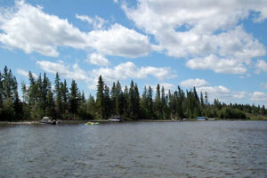 95% Sold Out !! Only 4 Lakefront lots remaining in Van Impe Sub