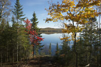 Waterfront / Cottage or Retire on 1.46 acres in Elliot Lake