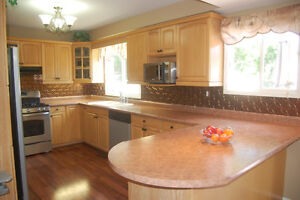 4 Bedroom home with finished basement/ open house Sunday 2-4pm Cambridge Kitchener Area image 3