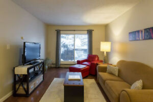 1 Bedroom Condo available for Rent in Sunalta until May 2019