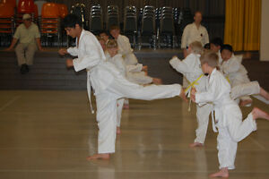Summer Beginners (7 -12 yrs) Children's Karate at the YMCA Peterborough Peterborough Area image 2