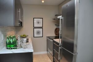 Corktown 1-bed beauty - steps to St Joes, downtown, GO....