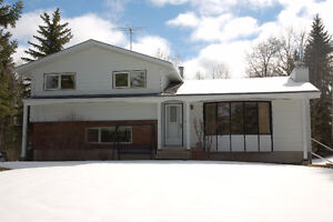 Immaculate Treed and Private Acreage!