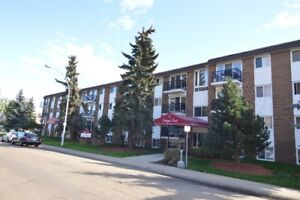Southgate Court - Big Renovated 1 BDR -1 block to Southgate LRT