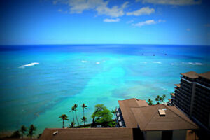 2 weeks of paradise in Waikiki!