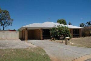 3x1 house for rent Leda Leda Kwinana Area Preview