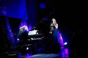 Live Music for Wedding - Experienced Singer , Optional Pianist Kitchener / Waterloo Kitchener Area image 3