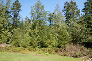 Large Sunny Lot on Bowen Island - 1580 Evergreen North Shore Greater Vancouver Area image 2