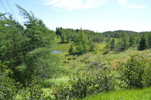 Large parcel of land for sale in Whitbourne!