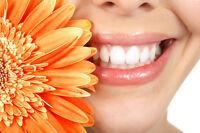 Secrétaire dentaire-Dental Secretary