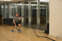 Cert Personal Trainer & Registered Kinesiologist – Comp. Session