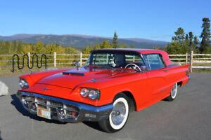 Professionaly Restored 1960 Ford Thunderbird