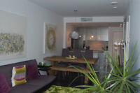 Awesome 1BR condo - Perfect for home  base in Montreal Downtown