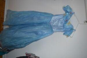 Costume princesse cendrillon avec perruque et costume aurore