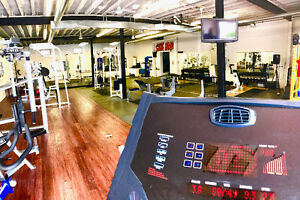 Affordable Personal Training keeping you accountable!! London Ontario image 7