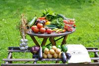 Paniers de légumes. Livraison hebdomadaire.