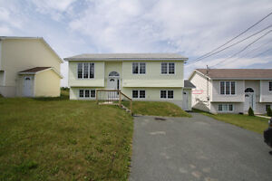 3 Houses for Rent (1 CBS - 2 St. John's) (1 Includes HEAT)