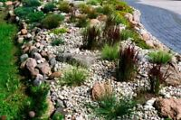 LOOKING FOR SOME LANDSCAPING WORK TO BE DONE AROUND YOUR YARD??