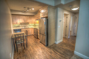 Upscale 1 bedroom in Leduc!