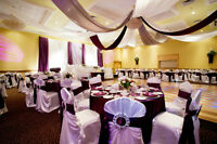 Decorator / Officiant / DJ for Wedding reception wanted