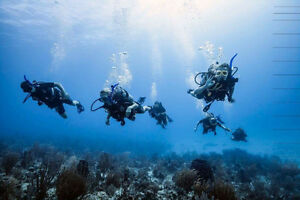 Antigua Diving Package