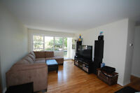 1 Bdrm Windsor Plaza, Avail Oct 1st- Close to the Commons!