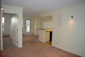 One Bedroom Condo in Connaught
