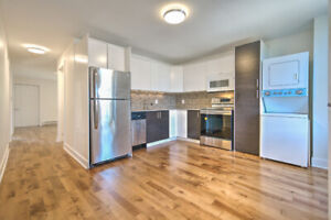 Fully Renovated 5 1/2 Apartment for Rent