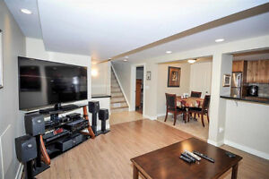Gorgeous Open Concept Professionally Developed