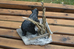 3-D Hand Crafted Black Bear Table Sculpture Belleville Belleville Area image 5