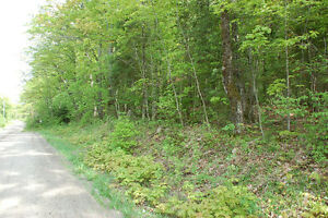 Haliburton Real Estate Team-Loon Lake Area Vacant Lot-$29,900